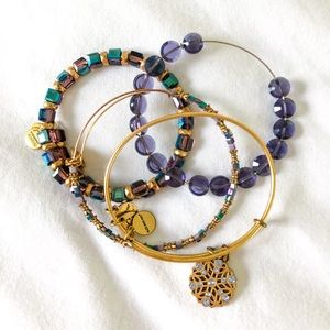 Alex and Ani winter collection